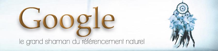 Google : le grand shaman du référencement naturel en 2014